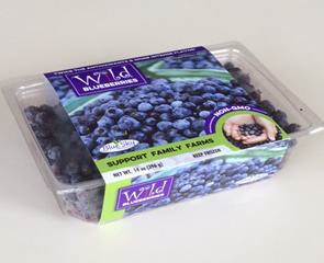 Frozen containers of Wild Maine Blueberries